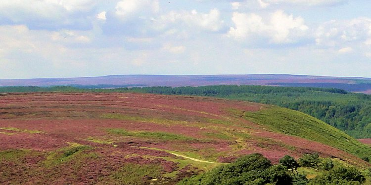 North York Moors National Park Sleights UK
